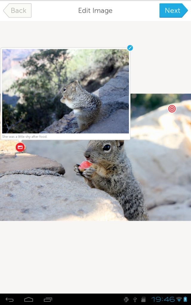 edited-squirrel 2